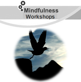 Mindfulness Workshops